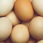 卵(鶏卵)~完 全 栄 養 食 品!安くて調理しやすくまさにパーフェクト!個数を気にせずたくさん食べましょう♪