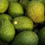 アボカド〜世界で最も栄養価の高い果物!?美容効果など女性にうれしい栄養たっぷり!