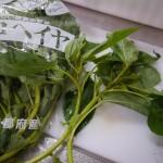 モロヘイヤ〜夏野菜の王様!栄養たっぷり胃にやさしい♪冷凍保存していろんな料理に使いましょう!