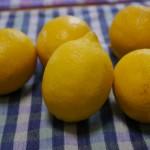 レモン〜朝起きてレモン。帰宅したらレモン。